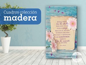 Cuadros Colección Madera