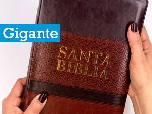 Biblias Tamaño Gigante