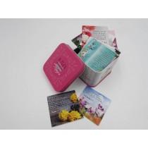 150 Promesas bíblicas para mujeres en caja metálica