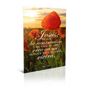 BOLETINES LE DIJO JESÚS YO SOY LA RESURECCION