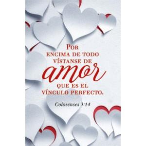 Plaqué Cerámica Amor Col. 3:14